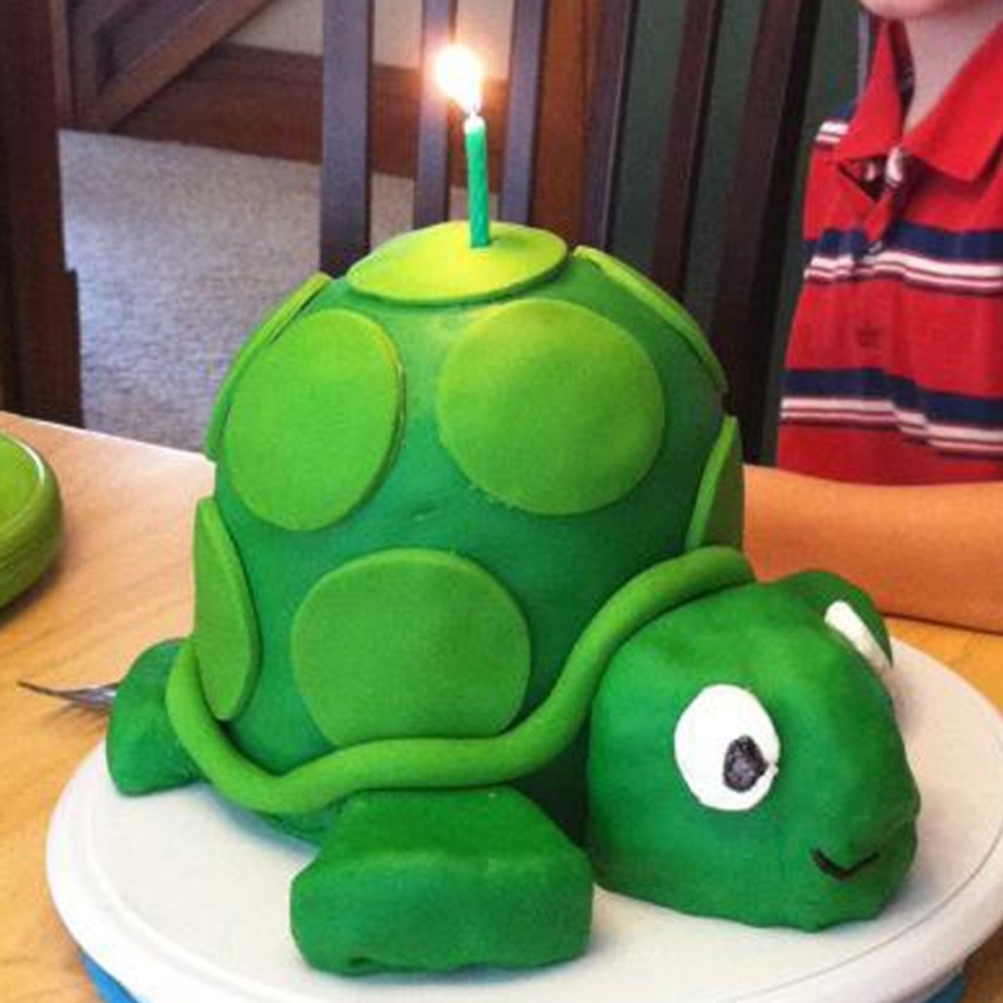 Turtle 3D Cake on Cake Central