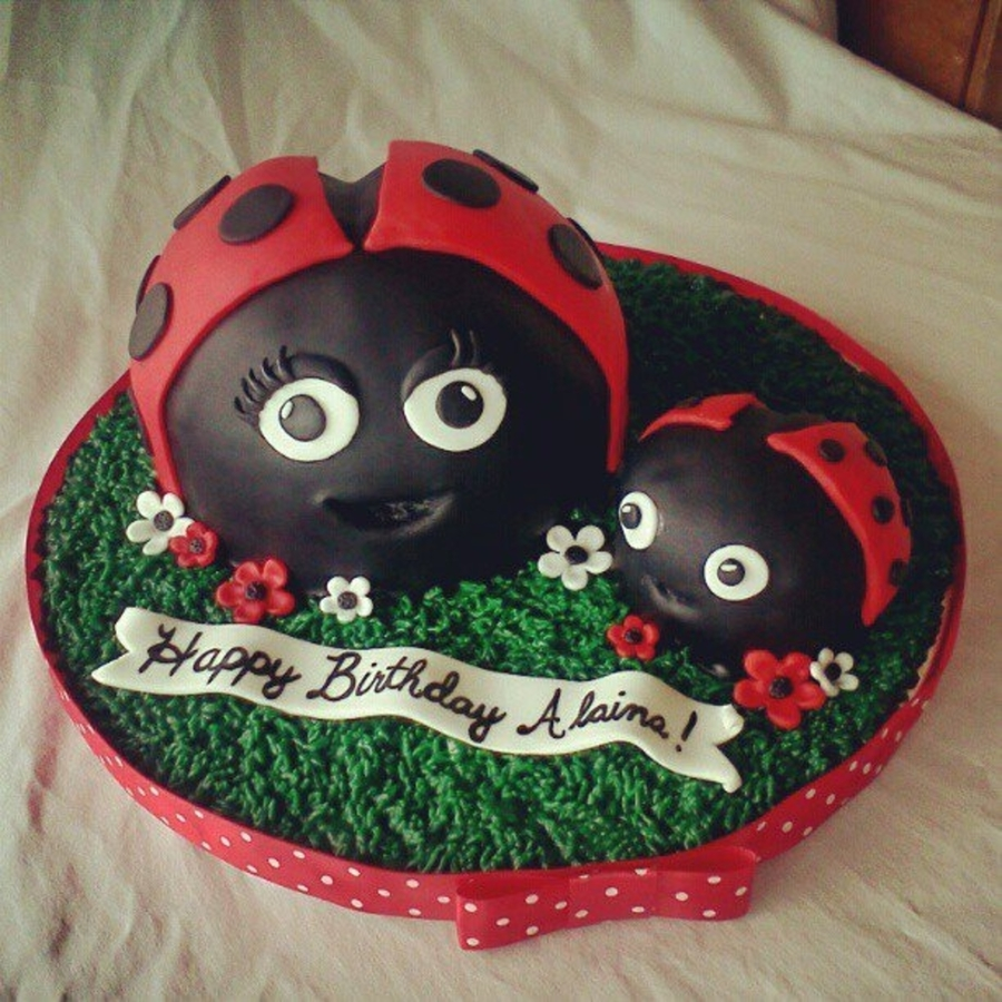 Ladybug First Birthday on Cake Central