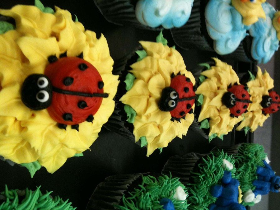 Ladybug Cuppycakes on Cake Central