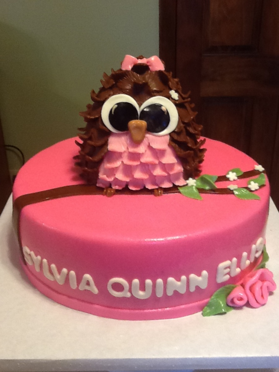 Pink Baby Shower Owl Cake On Cake Central