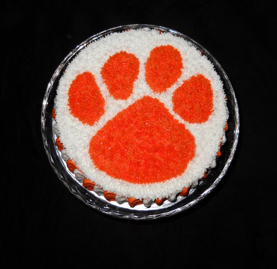 Fantastic Clemson Birthday Cakecentral Com Funny Birthday Cards Online Eattedamsfinfo