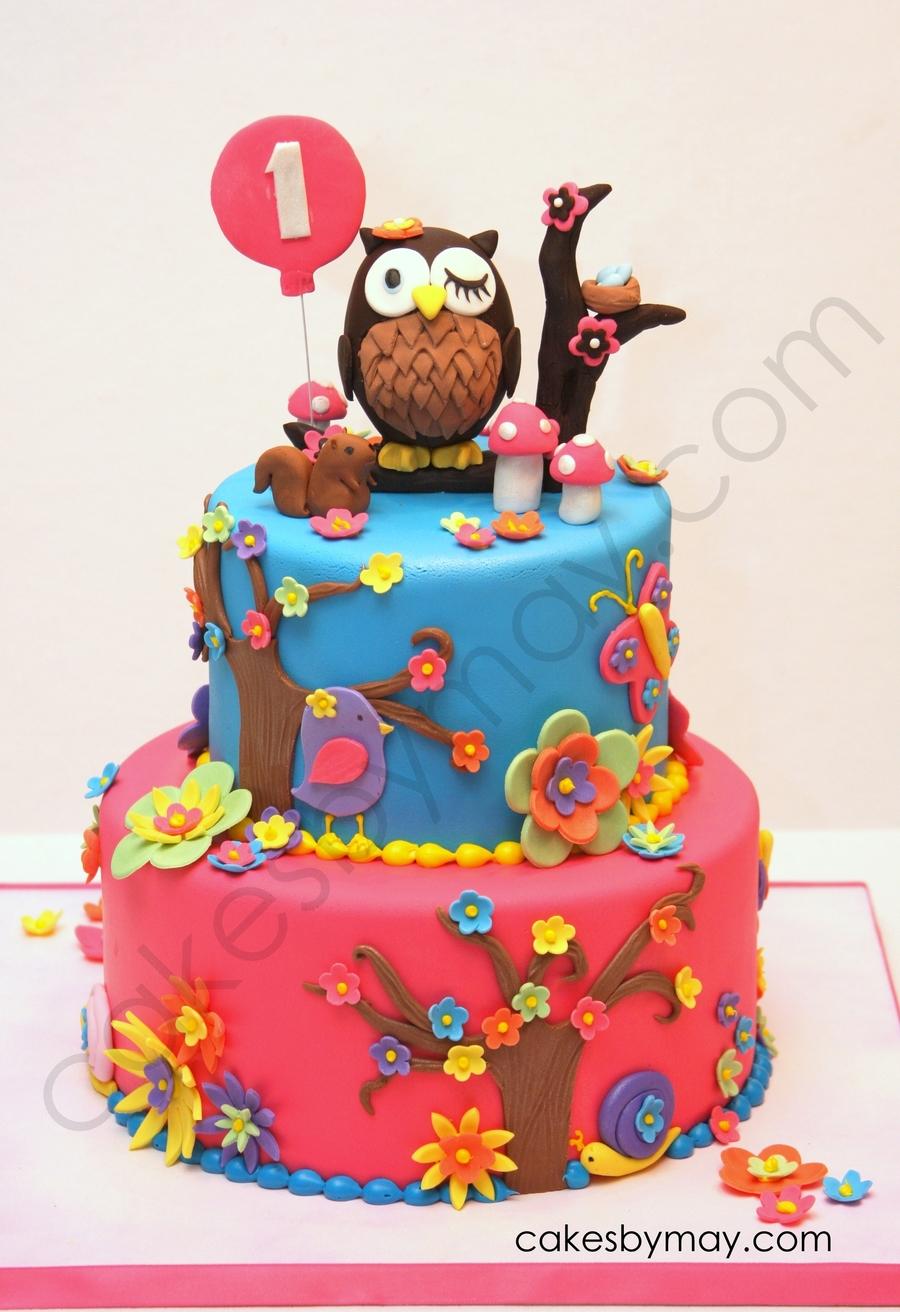 Owl 1St Birthday Cake CakeCentralcom