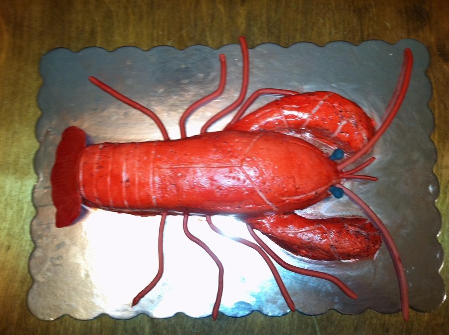 Largest Crawfish Ever Cakecentralcom