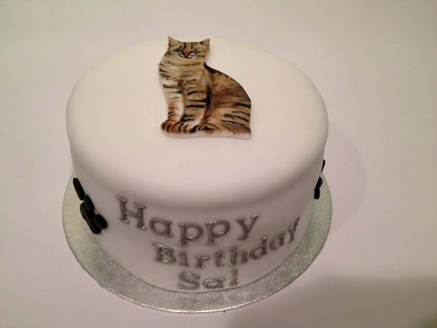 Marvelous Cat Birthday Cake Cakecentral Com Funny Birthday Cards Online Inifofree Goldxyz