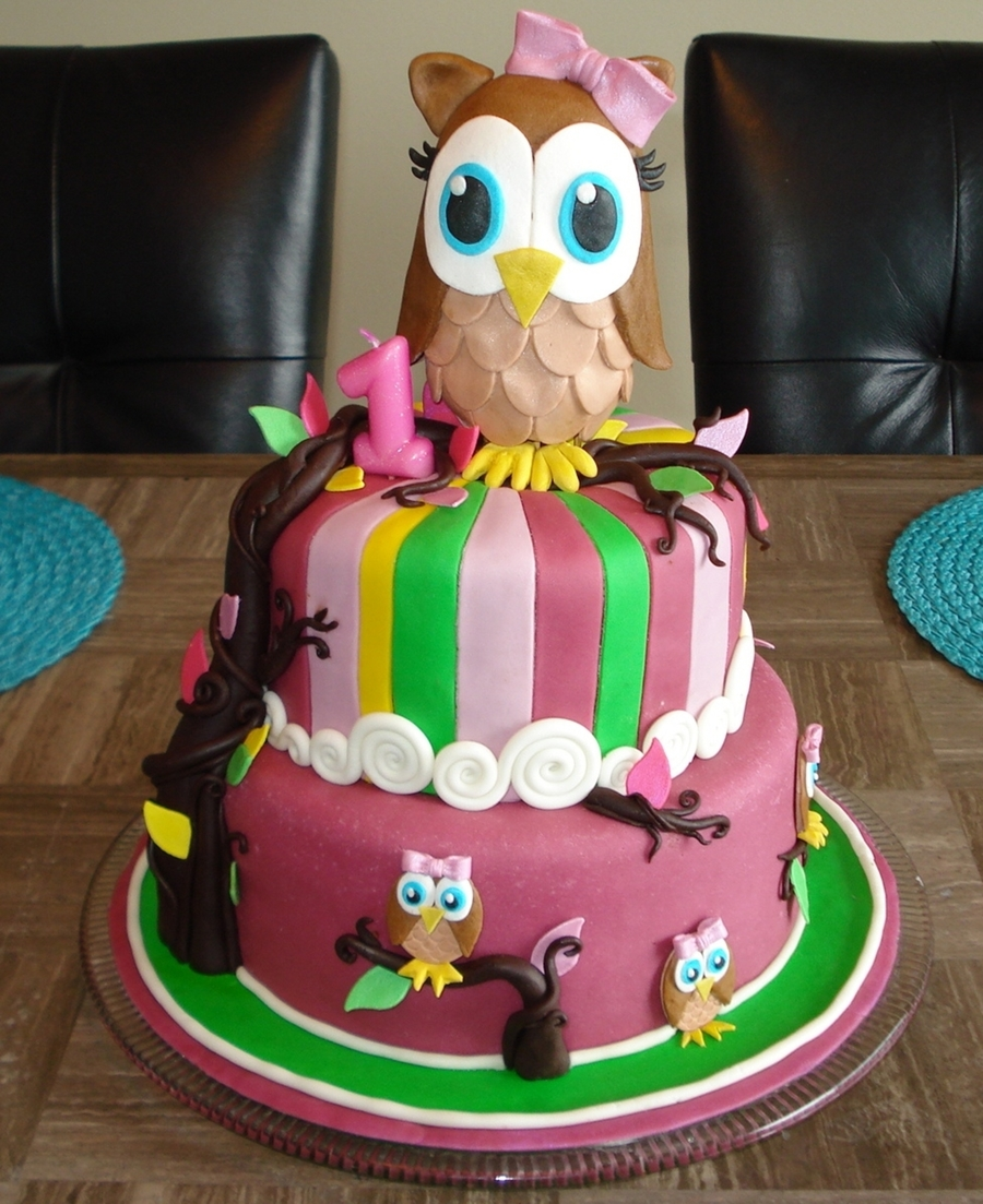 First Birthday Owl Cake CakeCentralcom