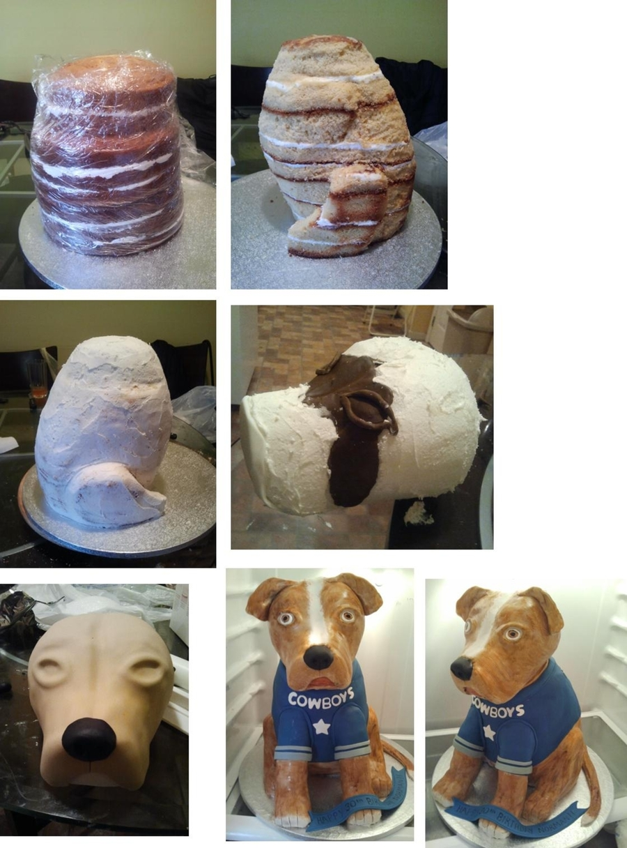 3D Dog Cake. . How It's Done on Cake Central