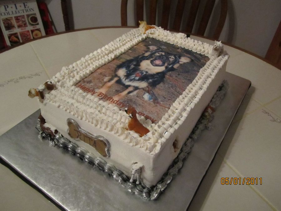 Doggie Cake  on Cake Central