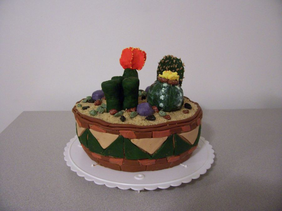 Cactus Garden on Cake Central