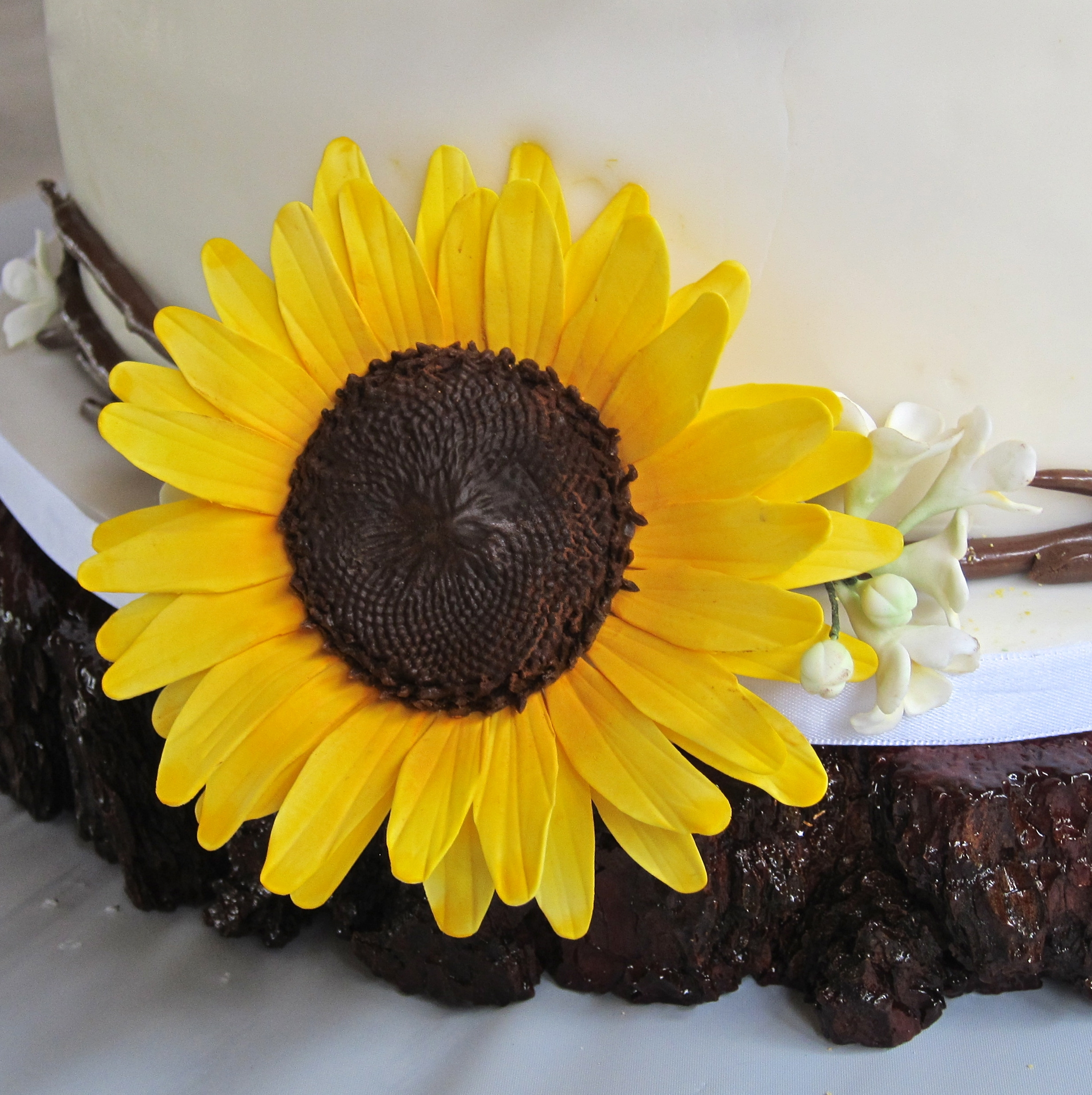 Modern Rustic Wedding Cake For An Outdoor Wedding 4 Offset Tiers ...