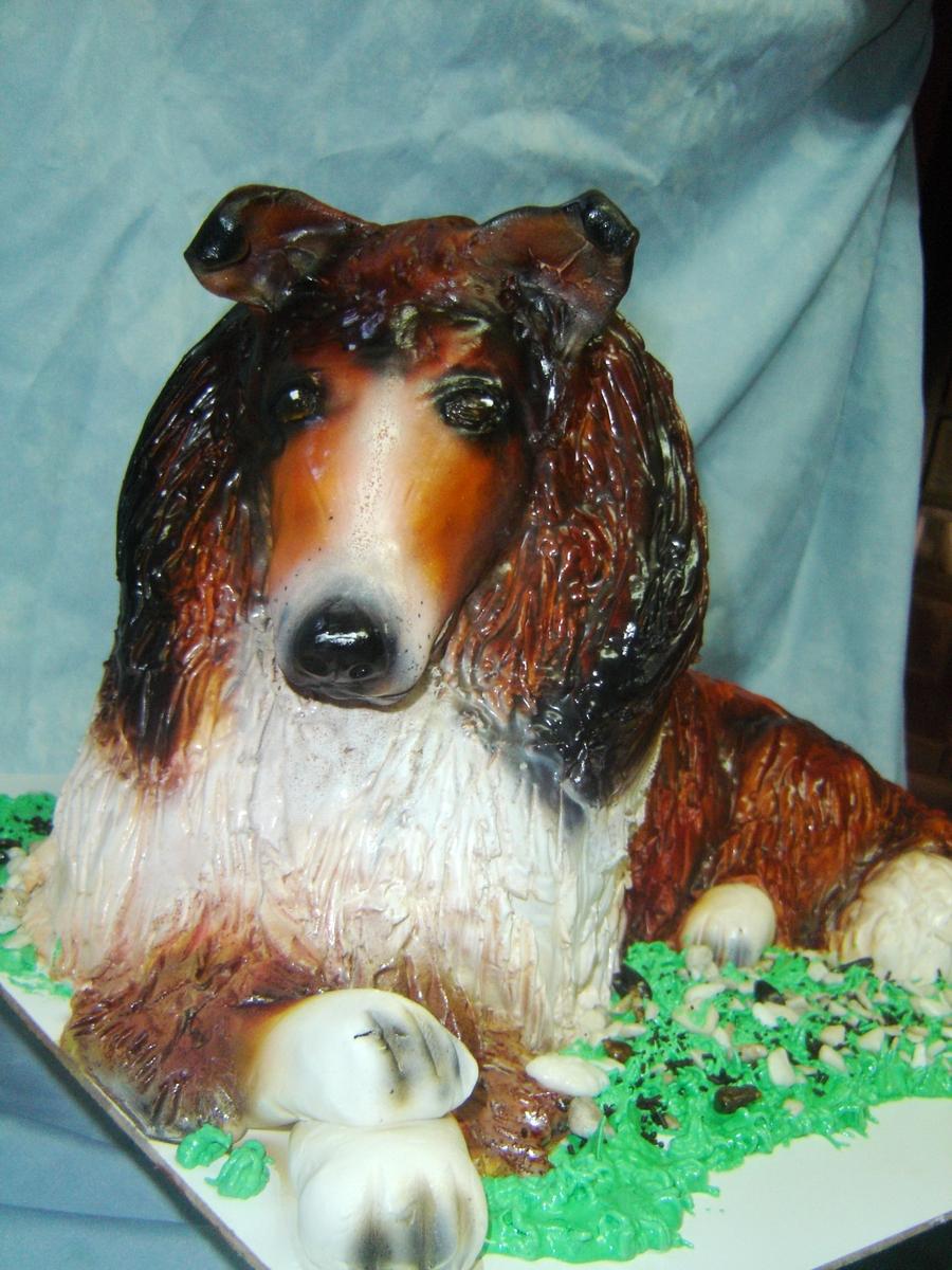 Rough Collie Lassie Cakecentral Com