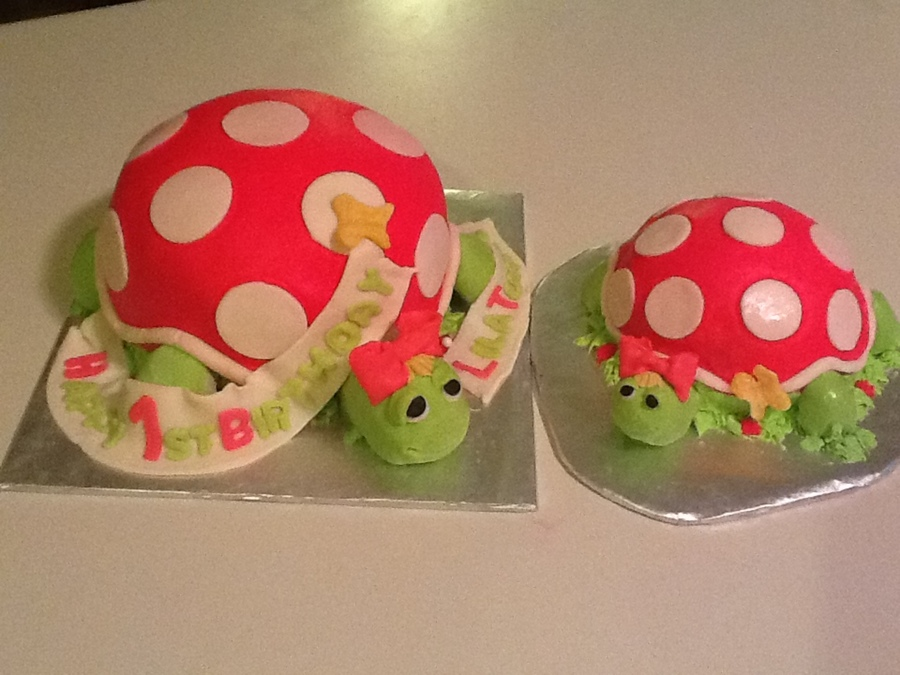 Lil Turtle Is 1  on Cake Central