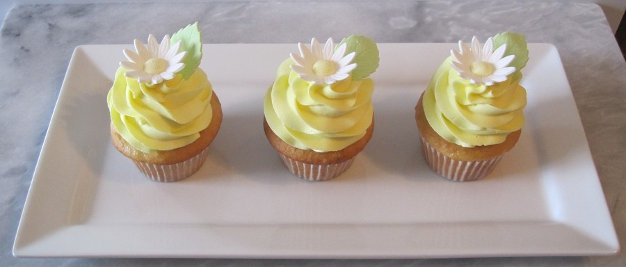Spring Daisy Cupcakes on Cake Central