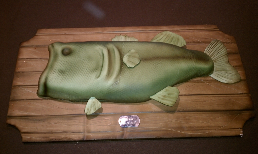 Mounted Fish Cake on Cake Central