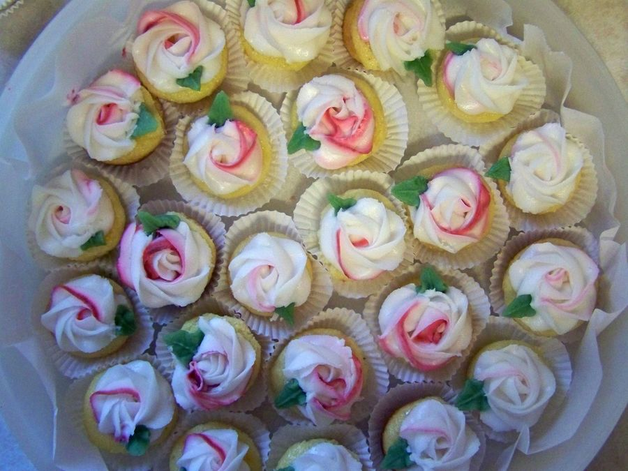 Mini Rose Cupcakes on Cake Central