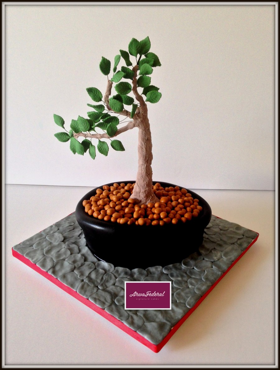 Bonsai Plant on Cake Central