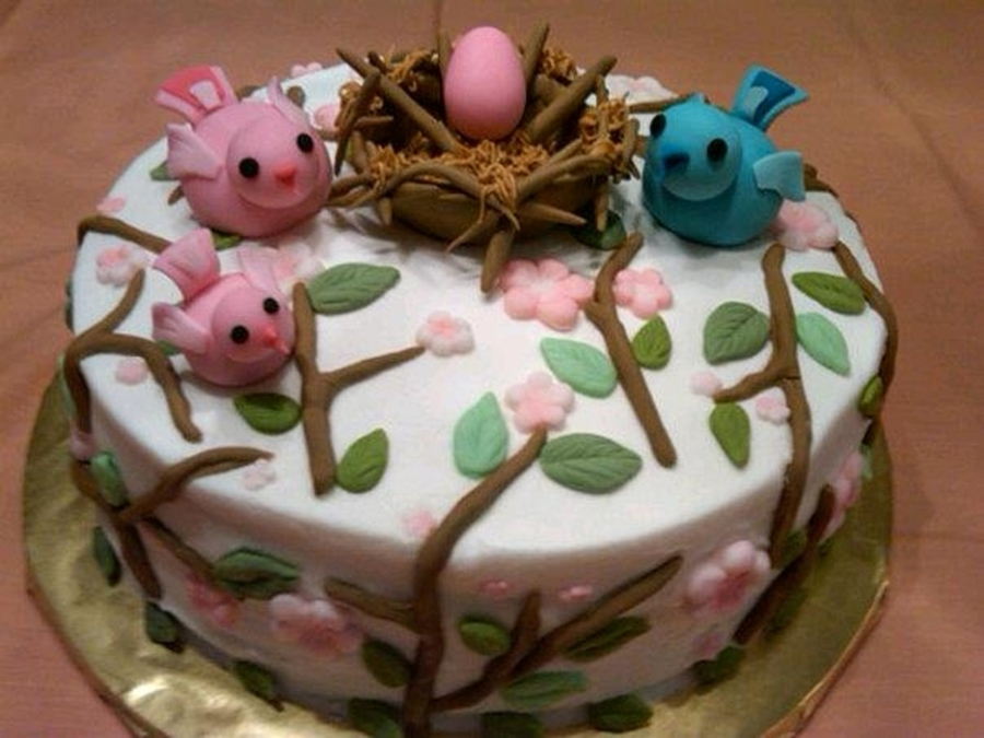 Baby Birds on Cake Central