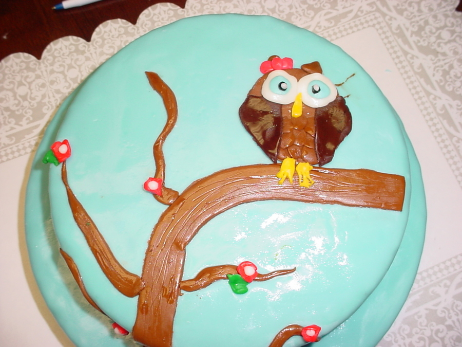 Amazing Owl Birthday Cake Cakecentral Com Funny Birthday Cards Online Drosicarndamsfinfo