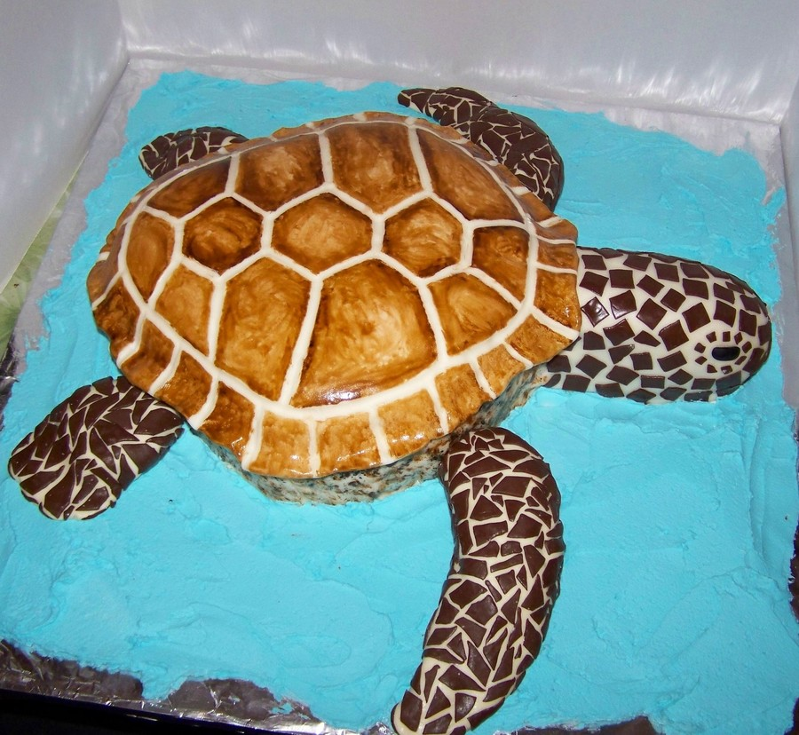Sea Turtle 50th Birthday Cake Cakecentral