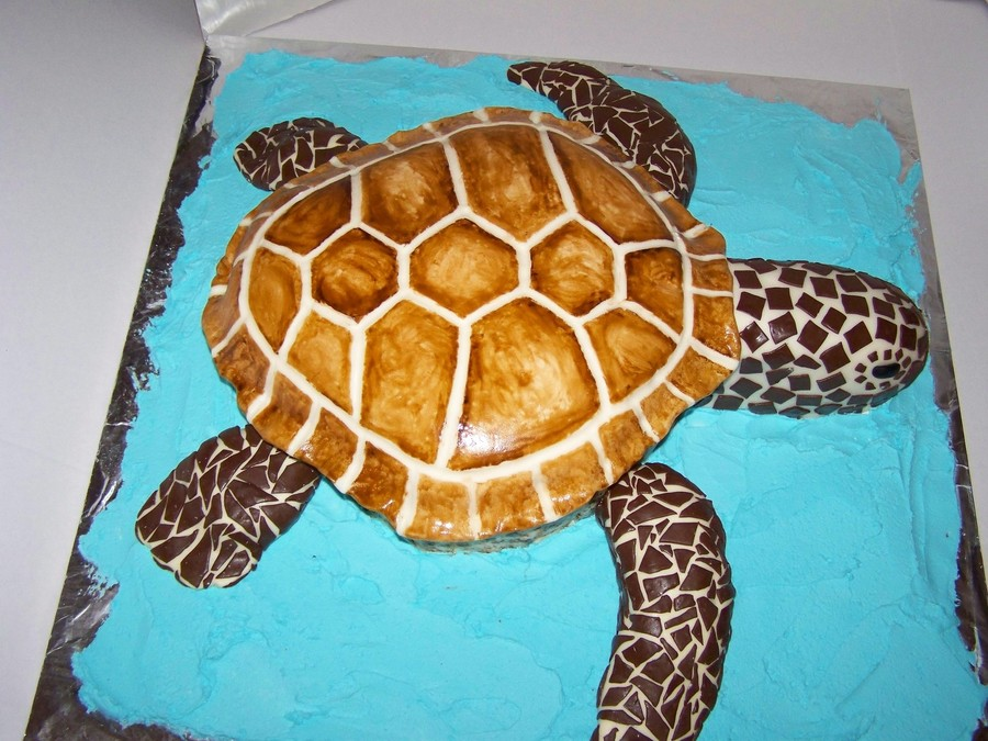 Sea Turtle 50Th Birthday Cake CakeCentralcom