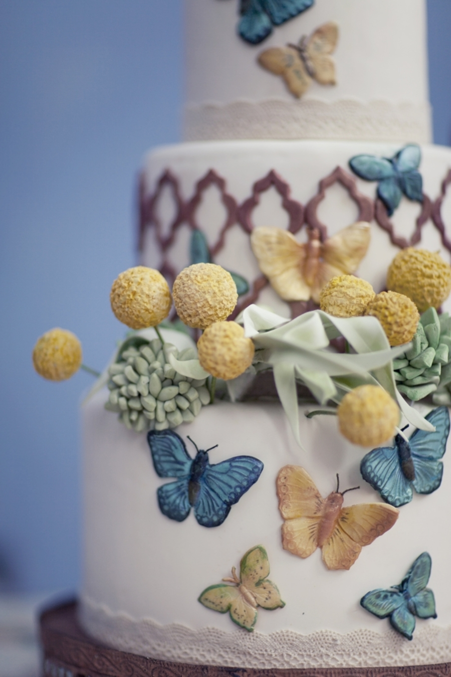Billy Balls, Succulents, & Butterflies on Cake Central