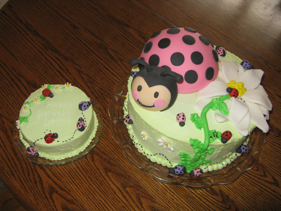 Daisies And Bugs on Cake Central
