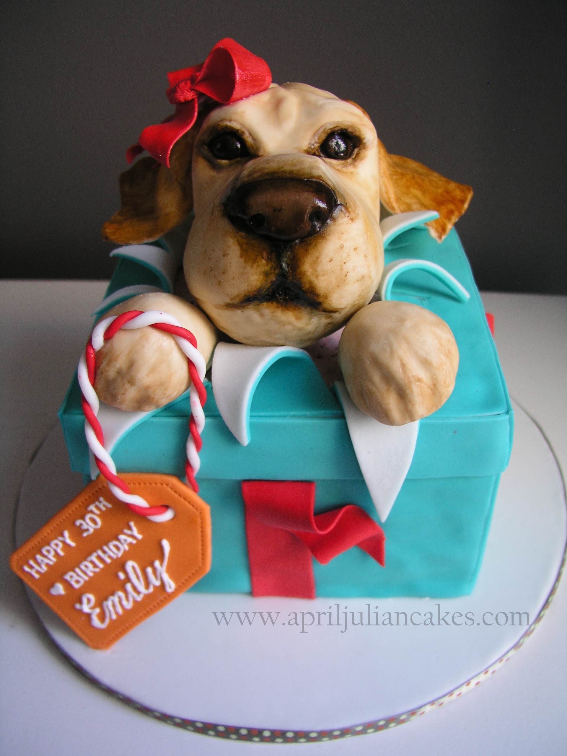 Birthday Cake For My Friend Emilys Big 3 0 She Recently Got A Rescue Dog Named Colby So I Recreated Her In RKT Is Chocolate With Raspberry SMBC