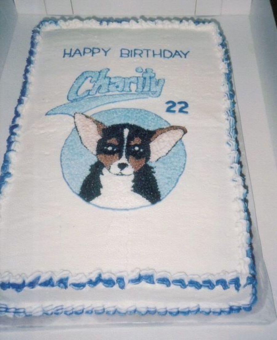 Enjoyable Chihuahua Birthday Cake Cakecentral Com Funny Birthday Cards Online Unhofree Goldxyz