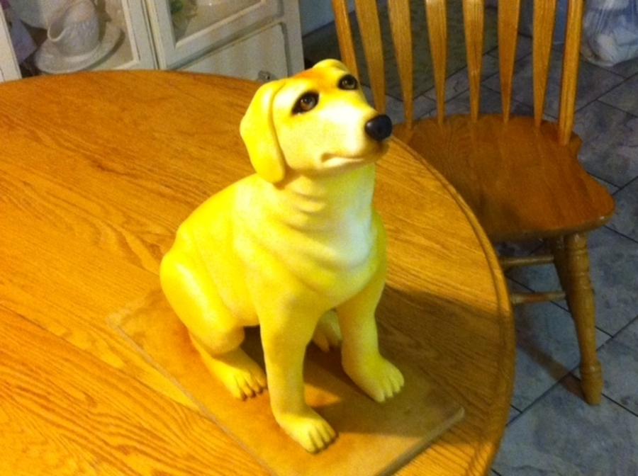 Yellow Lab on Cake Central