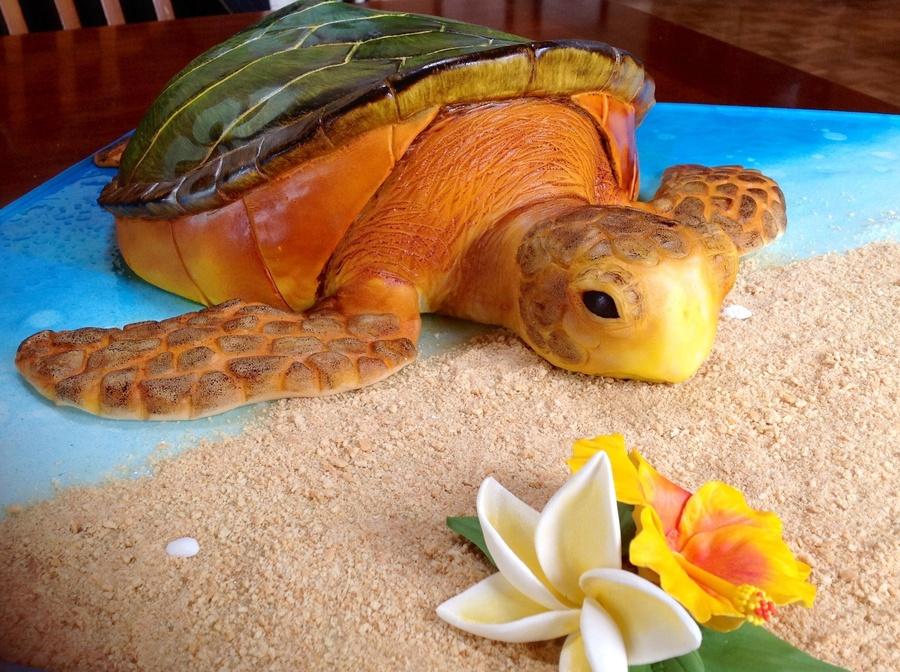 Sea Turtle Cakecentral Com