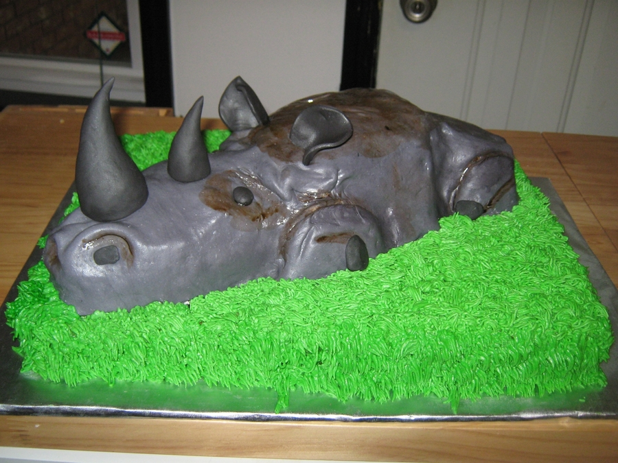 Can't Stop The Rhino on Cake Central