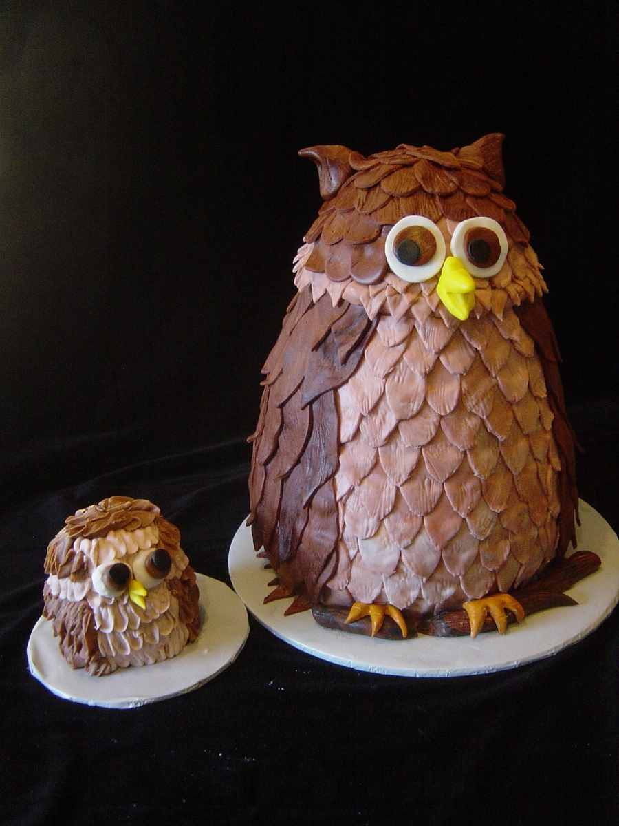 Owl Mama And Baby on Cake Central