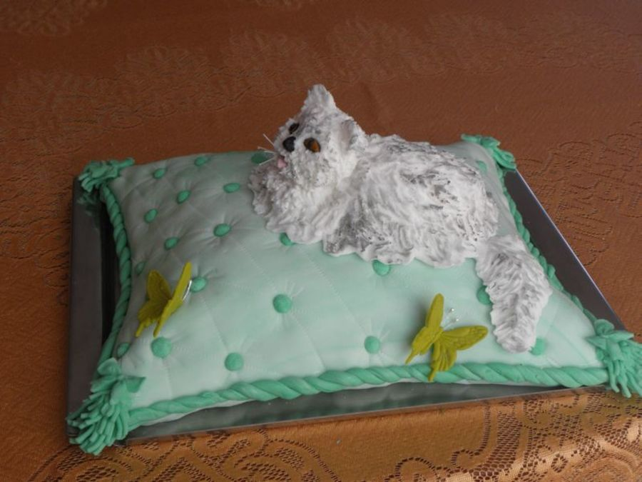 Persian Cat on Cake Central
