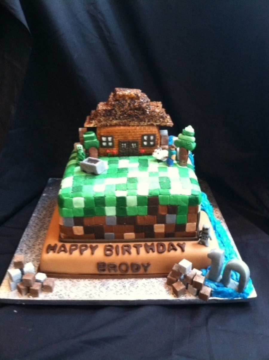 Minecraft Birthday Cake With Waterfall Complete Creepers Skeletons A Wolf And Stevie Cakecentral Com