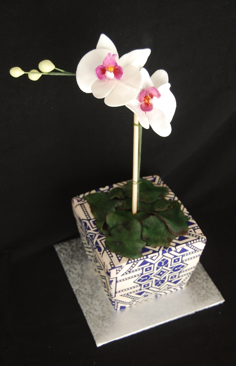 Potted Orchid Cake on Cake Central