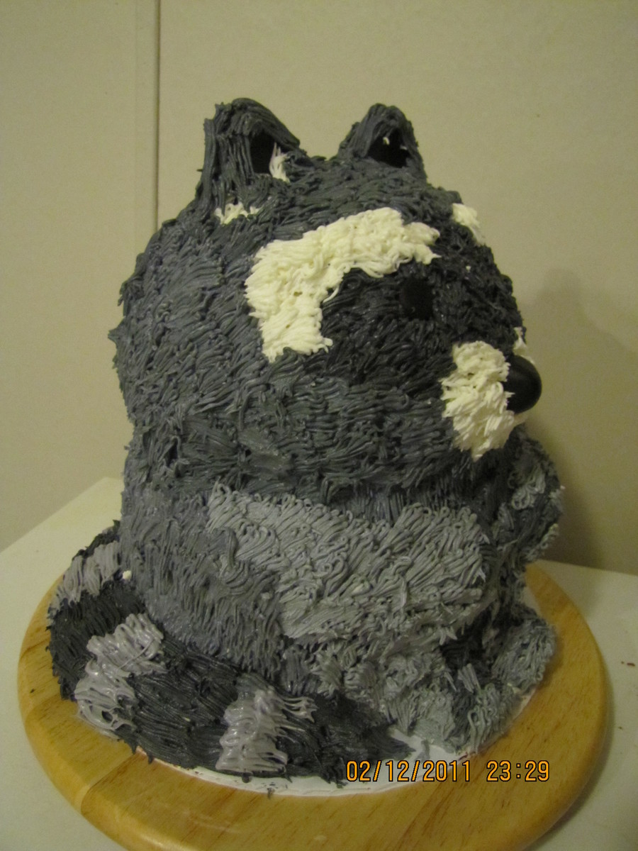 Raccoon on Cake Central