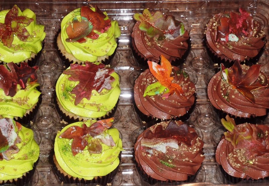 Autumn Cupcakes on Cake Central