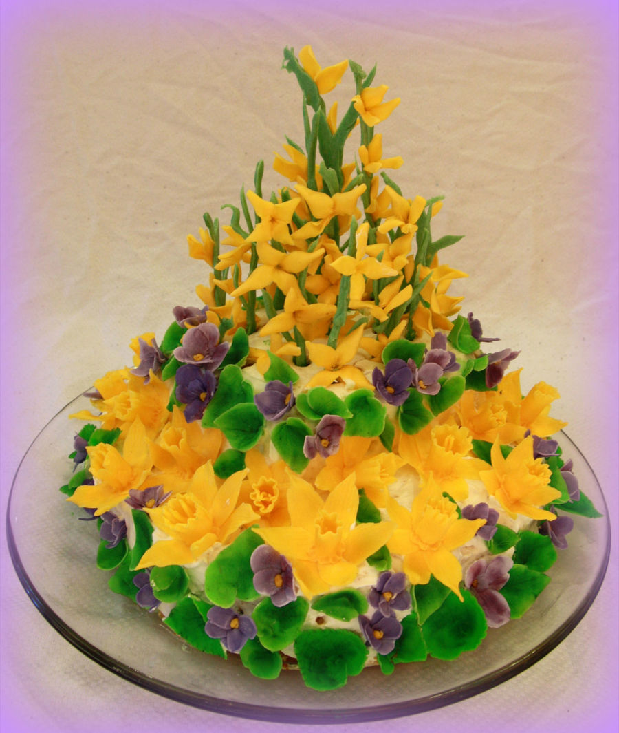Tiramisu Cake With Flowers Made Of Modeling Chocolate Daffodils Violets And Forsythia Are The Symbols Of Spring For Me on Cake Central