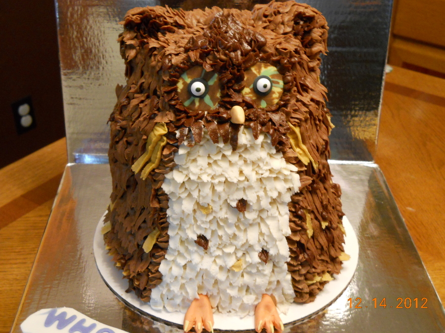 Attempt At Carving An Owl For Future Dils Birthday Chocolate Cake With Peanut Butter Creme Filling Feathers Are Done With Various on Cake Central