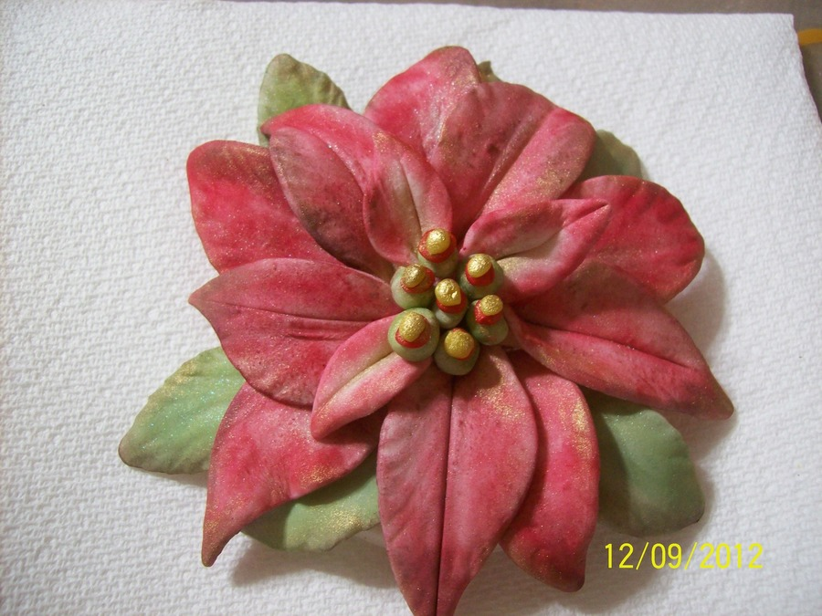 Gumpaste Poinsettia  on Cake Central
