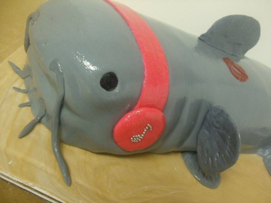 Catfish! on Cake Central
