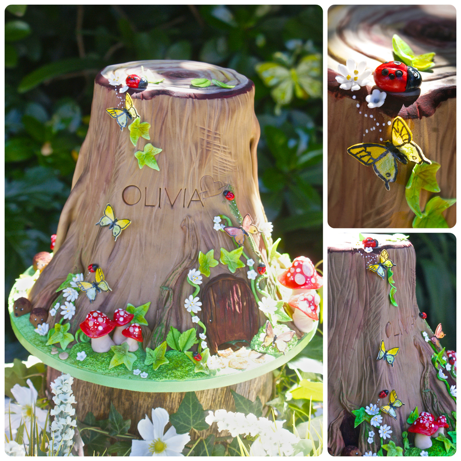Woodland Bugs And Butterflies Cake  on Cake Central