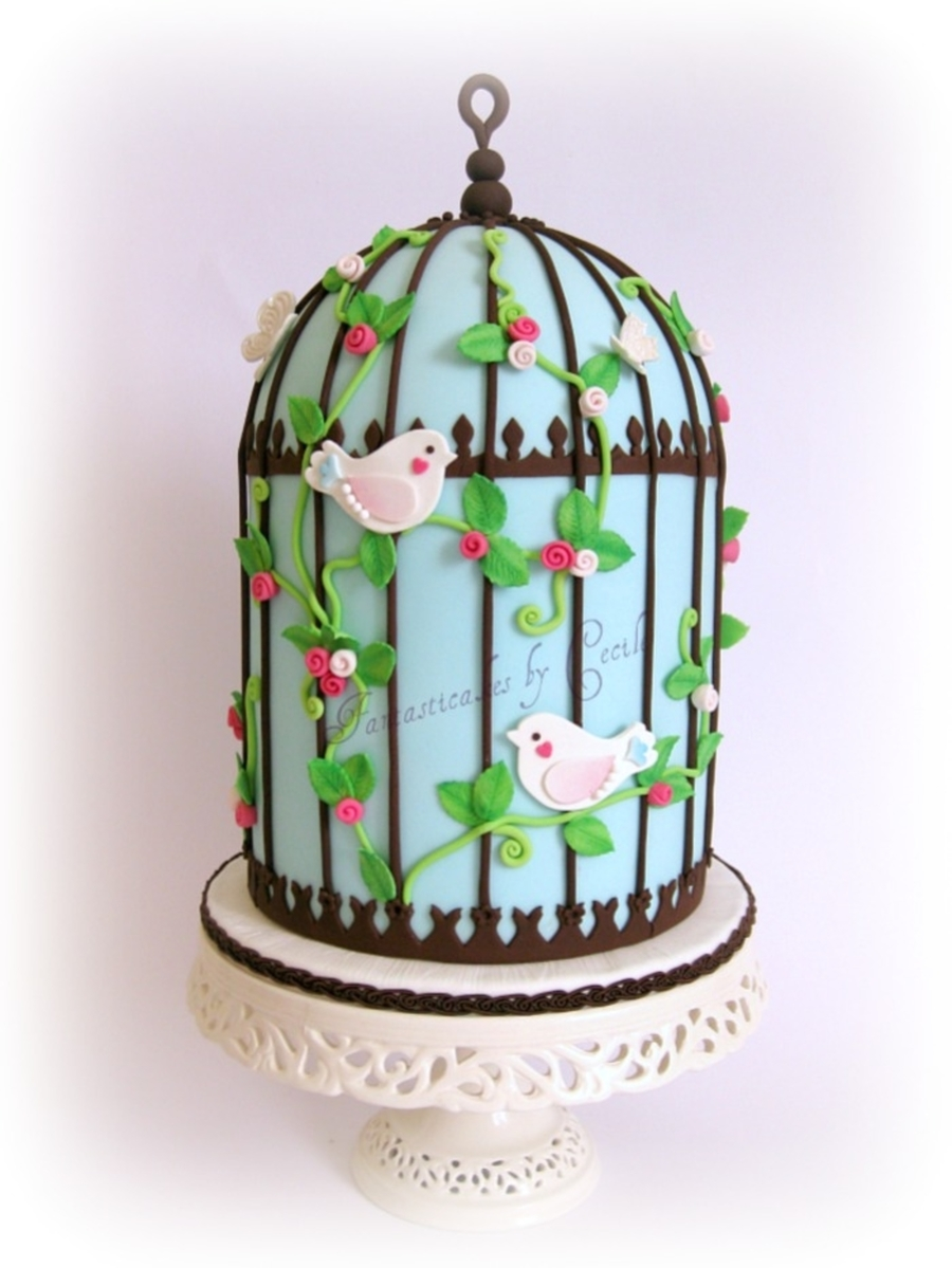 Pale Blue Birdcage Cake on Cake Central