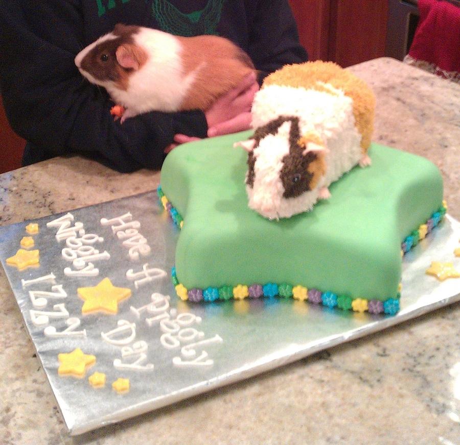 Guinea Pig Cake Recipe