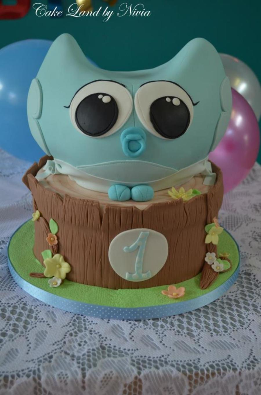 Baby Owl Cake  on Cake Central