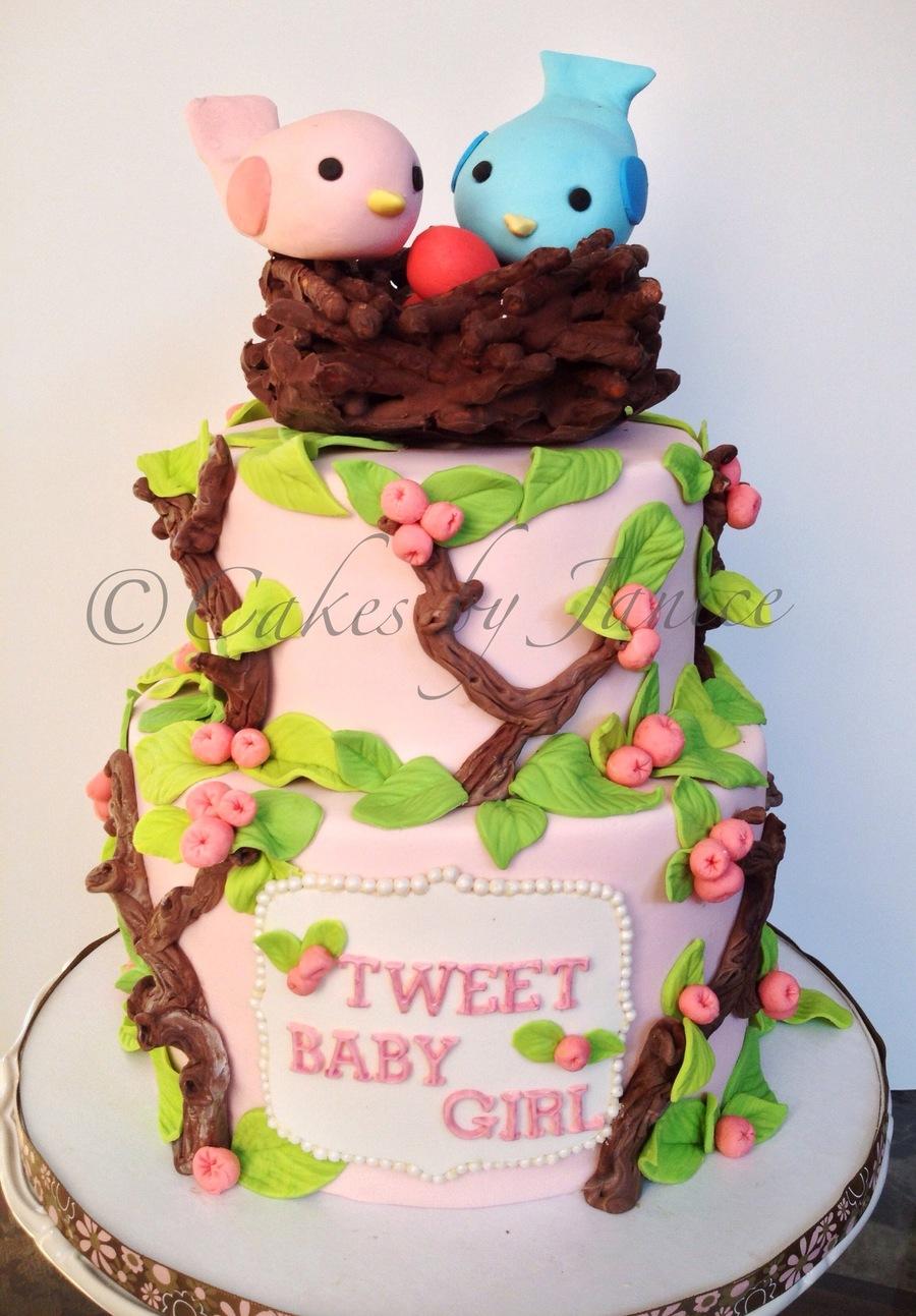 Bird Theme Nesting Theme Baby Shower For Girl Cakecentral Com