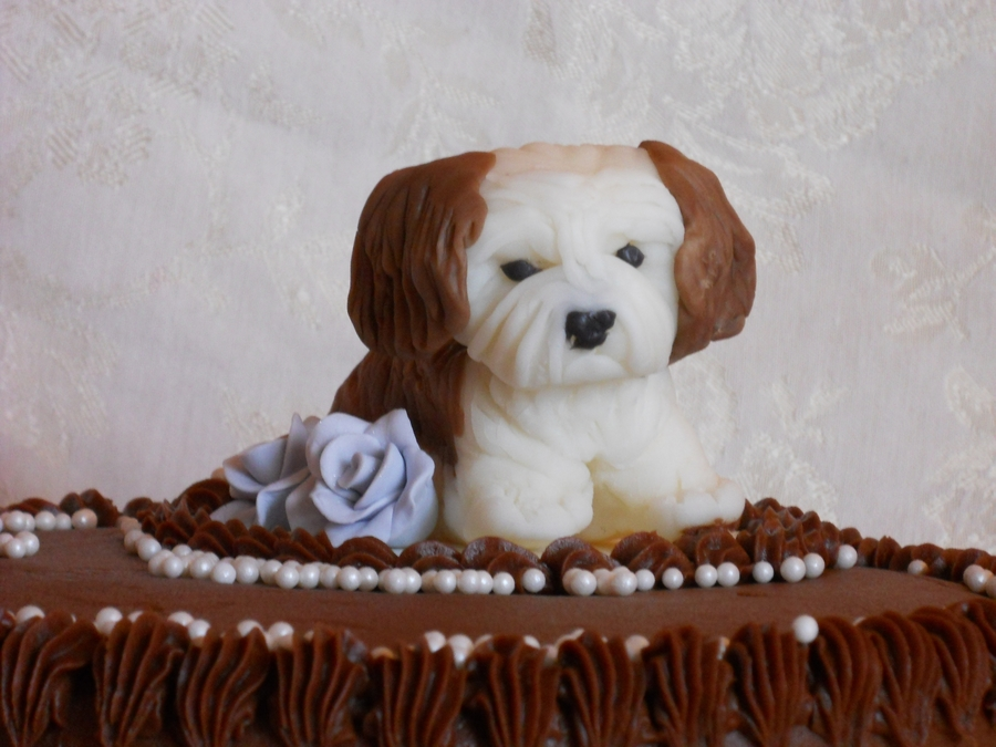 Enjoyable Puppy Birthday Cake Cakecentral Com Funny Birthday Cards Online Overcheapnameinfo