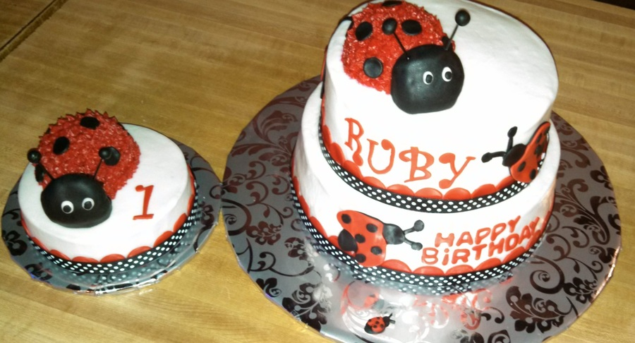 1st Birthday Lady Bug Cake With Smash And Ribbon At Bottom