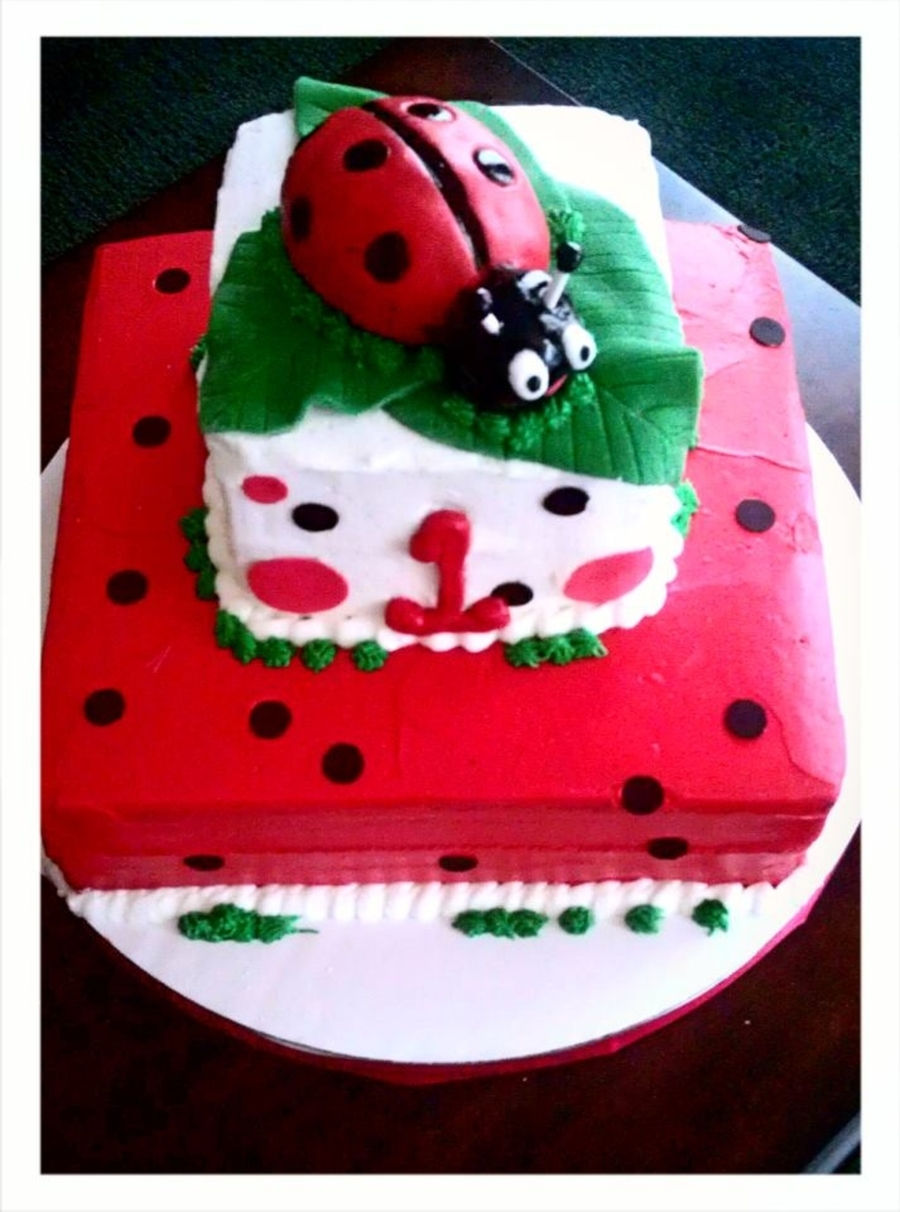 Ladybug Birthday on Cake Central