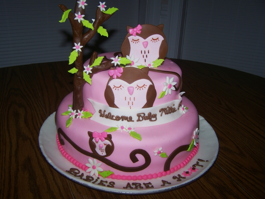 Owl Baby Cake  on Cake Central