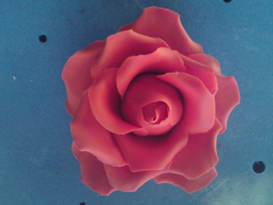 Red Rose on Cake Central